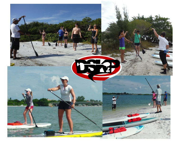 15-0423Collage-Learning-SUP