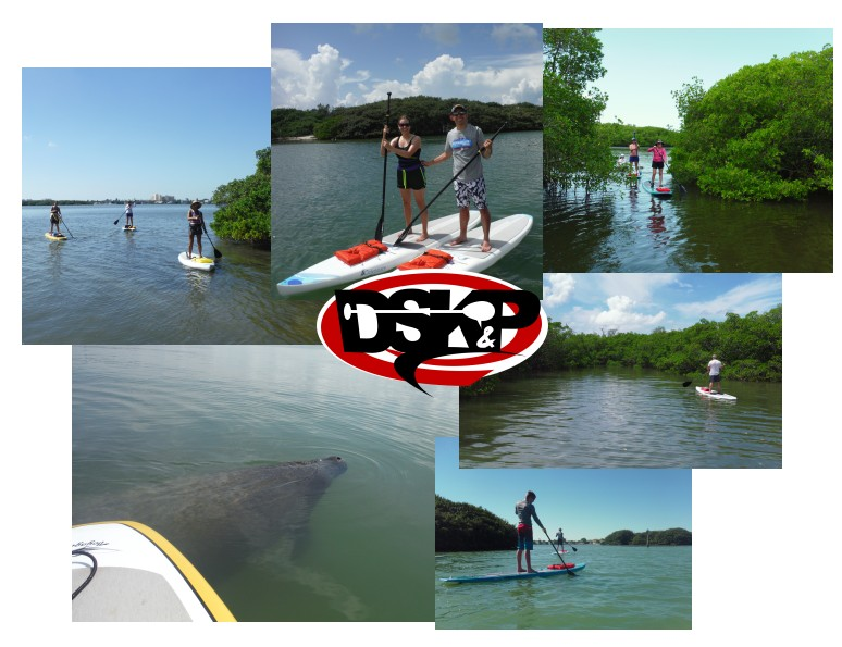 15-0423Collage-Eco-Paddleboarding